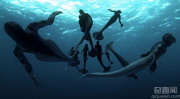 人类的近祖之谜 海猿是是不是人类的近祖