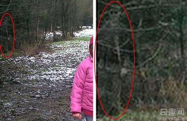 在树林边拍摄到的骷髅照片