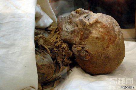 [多图]埃及展出最著名女法老木乃伊 解开身份谜团