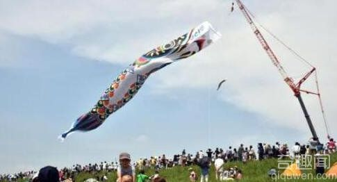 日本迎男孩节 挂起各式鲤鱼旗