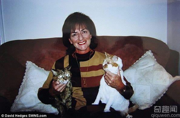 世界上最长寿的猫 24周岁相当于人类的114岁