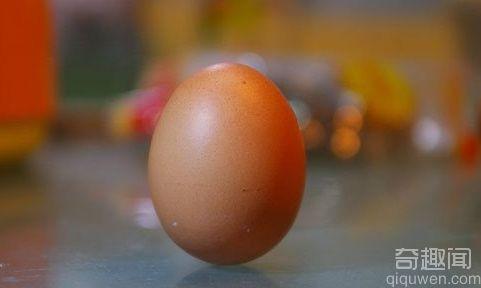 春分是什么意思 春分为何易把鸡蛋立起