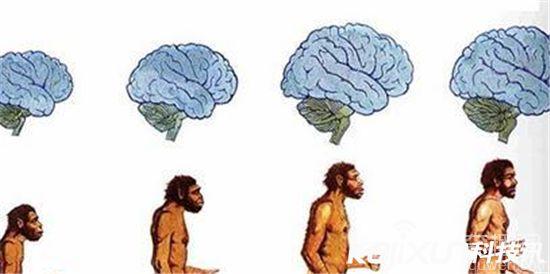 人类1000年后的样子 1000年后未来人的长像