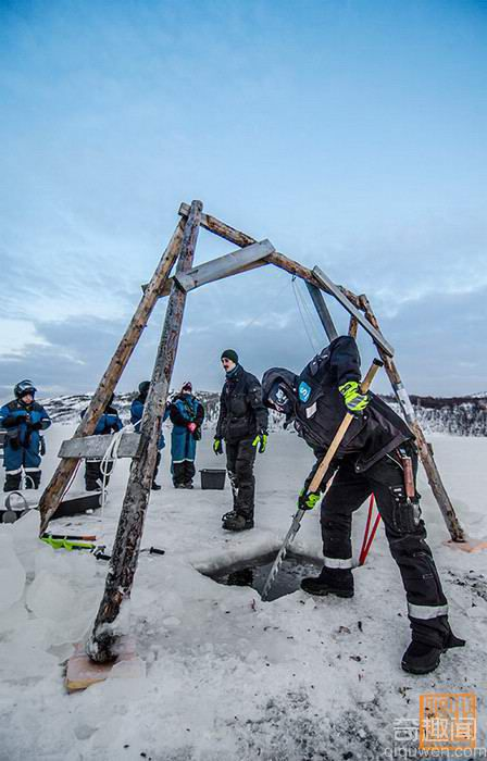 挪威巨型帝王蟹 已泛滥成灾可大饱口福