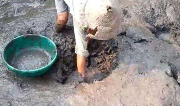 男子下泥潭摸鱼,以为摸到的是石头,拿起来看激动了