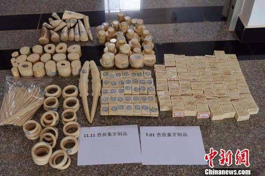 西双版纳森林公安破获特大跨国非法收购出售象牙制品案