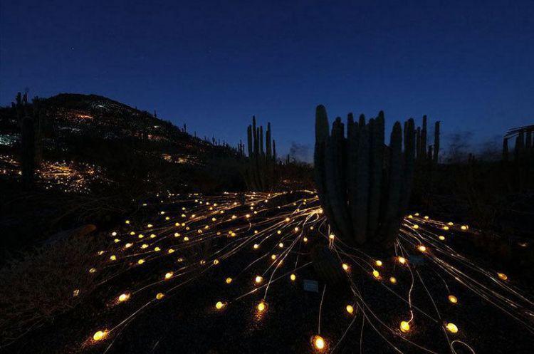 艺术家用5万盏灯点亮沙漠宛如童话仙境