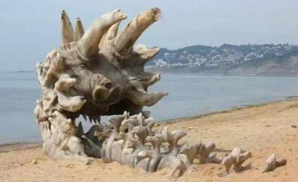 女子带孩子海滩玩耍,孩子发现了一骨架,女子激动的选择了报警