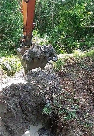 挖机师傅山里施工,随意一瞄,把自己吓到了