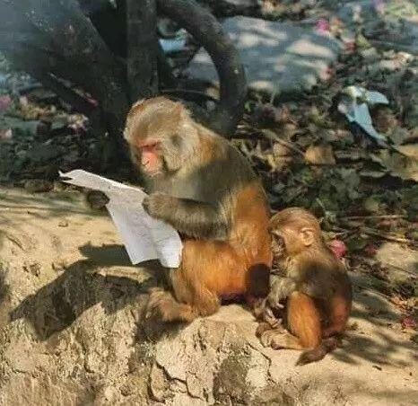 这就是考试不及格,要被妈妈挨打的你!