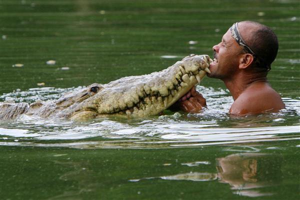 男子救治一条奄奄一息的鳄鱼,20年后将其放生,隔天沿味寻男子