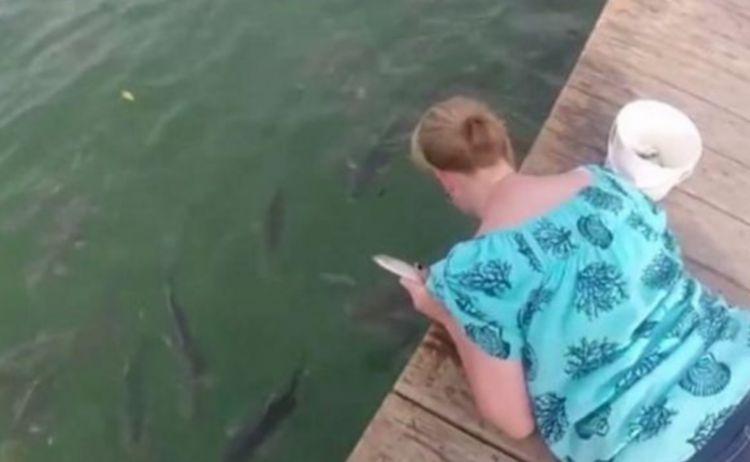 """女子水面徒手喂鱼,却不料跳上来个""""大家伙"""",让她后悔不已!"""