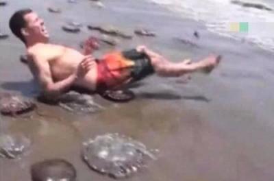 奇闻男子沙滩发现不明生物,将它捉住戴在头上,下一秒悲剧发生了