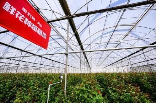 卖空原产地,卖遍全中国聚划算在下沉市场实践淘宝方法论