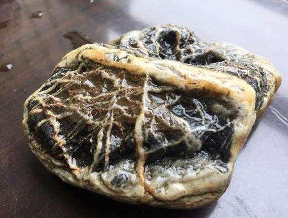 农村大叔捡到一块怪石,花纹奇特,专家鉴定后双目放光