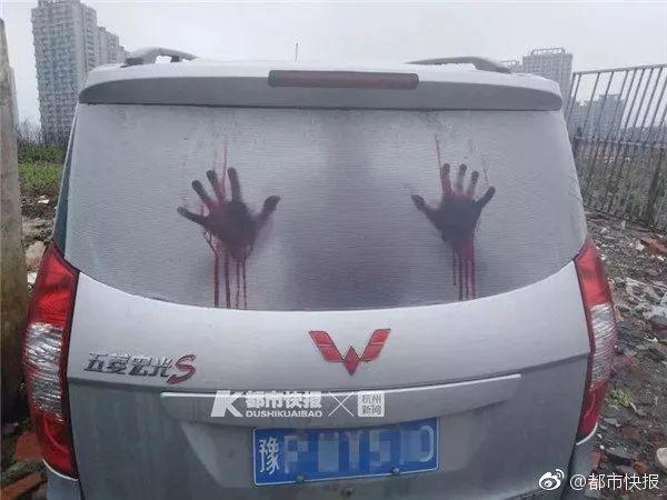 """逗B奇闻丨""""太吓人了!面包车后面趴着一个血人!""""然而……"""