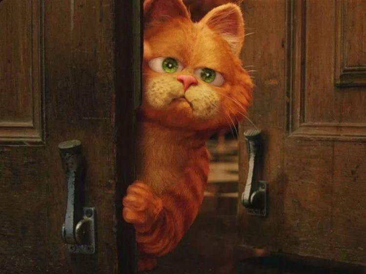 《猫和老鼠》要拍真人版,汤姆杰瑞放下仇恨,联手做了大事
