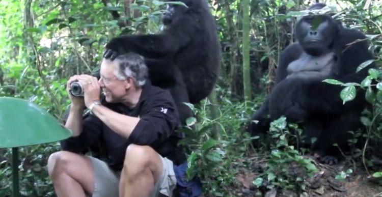 难以理解的奇葩女子,失恋后和猩猩结婚,还要为它生孩子!