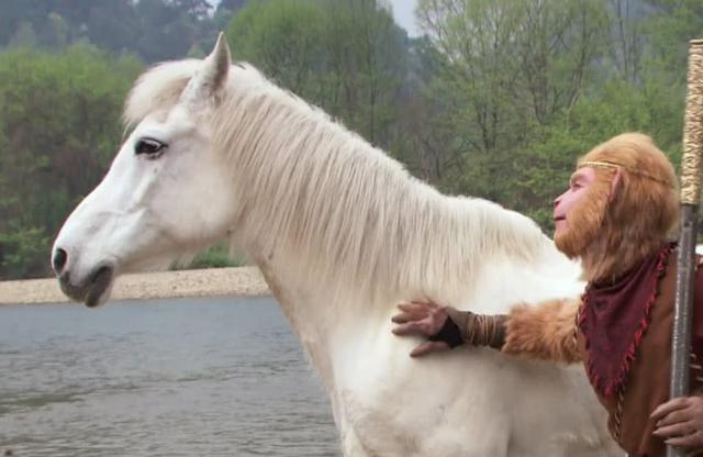 西游记中坐骑排名,孙悟空的坐骑榜上有名,九灵元圣位居榜首