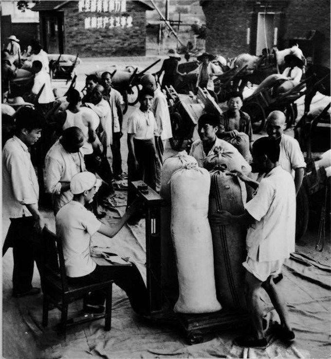 1950年代的西安,一对母子刚学着刷牙,远途运输还靠骆驼