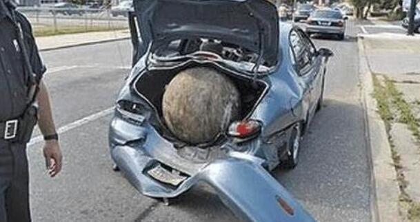 国外男子停车买水,回来时眼前发生的事,让他无法淡定