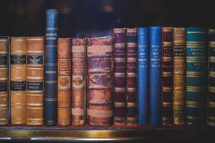 叔本华|读书不过是自己思考的代用物而已