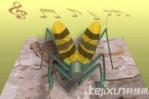 1.65亿年前昆虫化石 重塑蟋蟀叫声