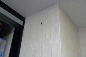 女主人墙壁小洞传出诡异声音 莫不是有鬼?