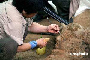 秦俑一号坑发现首件军官俑  对于研究秦人军制等具有重要意义