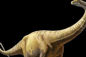 解密:最大的恐龙是如何移动如此沉重的身躯?