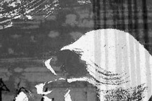 [图文]霍威克棚屋遗址 不翼而飞的古英国人遗骸
