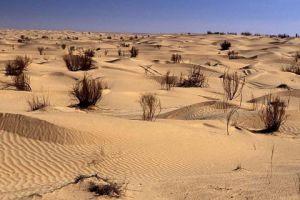 沙漠地区才是世界上最热的地方