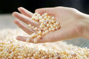 西施传说:西施与珍珠的故事