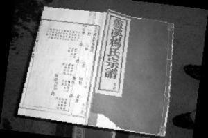 杨家将后人故事  同村习武参军
