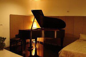 """世界上最贵的钢琴是""""蓓森朵芙""""【组图】"""