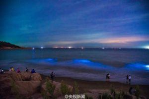 福建海滩现仙境 犹如璀璨的银河星空