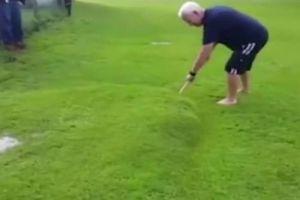 大雨后,男子后院草坪起个大包,一叉子下去,神奇的一幕发生了!