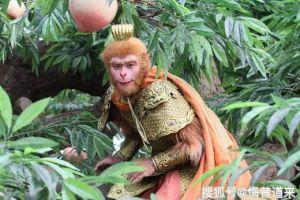 孙悟空成为斗战胜佛后第一次参加蟠桃会被众神仙取笑,老君佛祖皆逗他,有意思