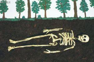人死后埋入土中,身体会发生什么变化?入土为安其实是错的