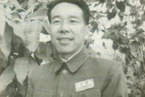 都说山东贡献大,东北野战军十二个纵队,有三个都是由华北贡献的