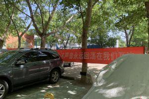"""网传北京一小区""""鸟因拉屎被毁巢""""!居民称传言夸大,园林局已展开调查"""