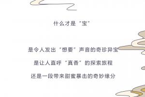 """第十七届文博会宝安区—寻""""宝""""环游记"""