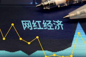 网红补税第一案曝光,大数据为税收公平赋能|新京报专栏